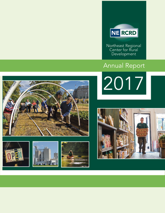Cover of 2017 Annual Report showing various community and economic development-themed images.