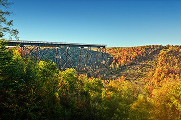 Kinzua Bridge surrounded by autumn foliage.